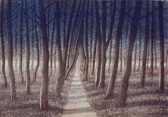Metsäpolku (1993)