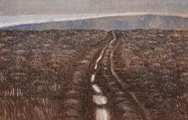 Wicklow I (1993)