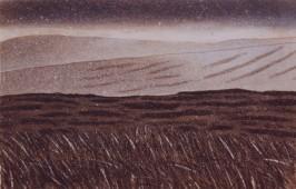 Wicklow IV (1993)