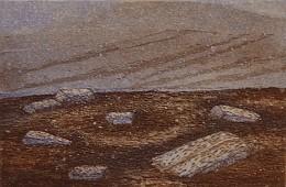 Wiclow III (1993)